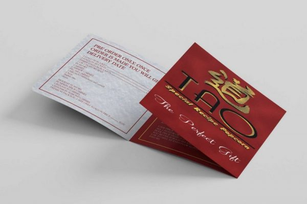 I_will_create_an_amazing_Bifold_or_Trifold_Brochure_design_dhv0s1